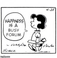 happiness_is_a_busy_forum_meme.jpeg