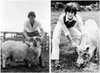 paul_mccartney_ram_john_lennon_imagine_pig.jpg